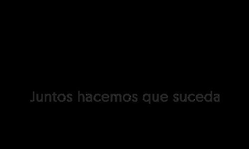 CONSULTORA ESTRATEGICA DE NEGOCIOS ONLINE
